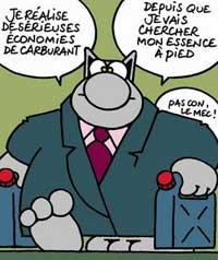 Le chat de Philippe Geluck